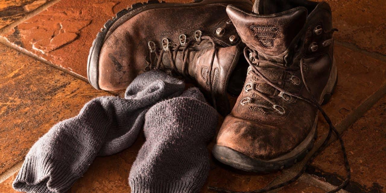 The 5 Best Hiking Socks of 2020