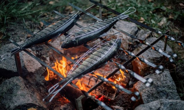 A Guide To Campfire Cooking For Beginners