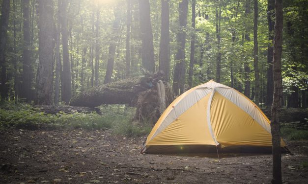Which Backpacking Shelter is the Best?