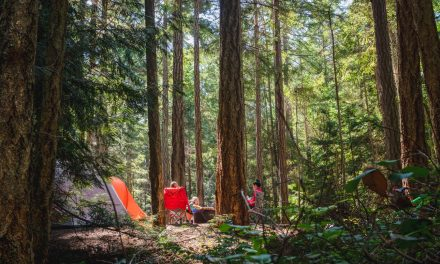 The 5 Best Family Tents For 2020
