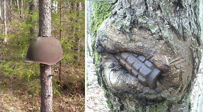 WW2 tree