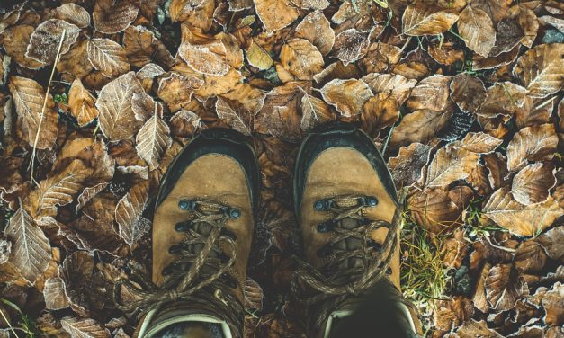 Top 5 Vegan Hiking Boots For 2020