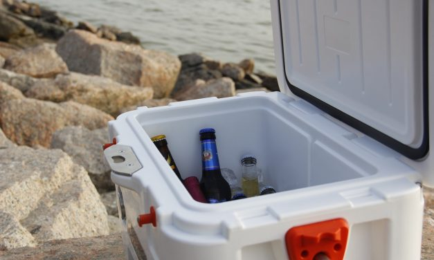 5 Best Camping Coolers [Food & Drink] in 2020