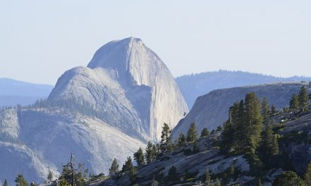 The 10 Best Yosemite National Park Campgrounds