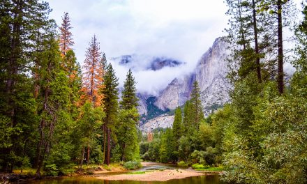 10 Best US Campgrounds For People Who Don't Camp