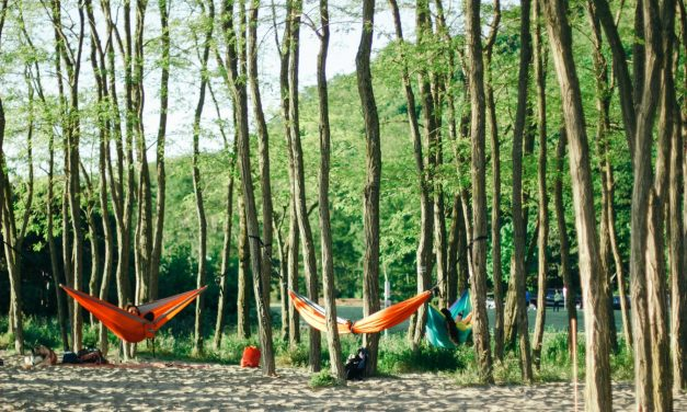 5 Best Hammock Tree Straps In 2021