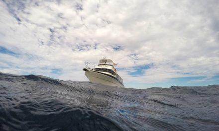 5 Best Bilge Pumps For Boating In 2021