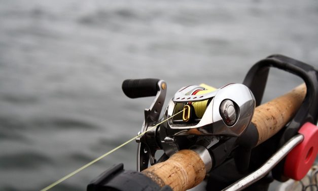 5 Best Braided Fishing Lines in 2021
