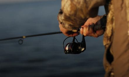 The 5 Best Spinning Reels Under $100 in 2021